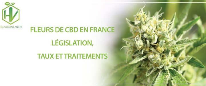 fleur cbd france legislation fleur cbd legislation par fleur cbd france legislation